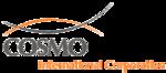 Logo: Cosmo International Corporation